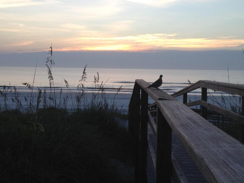 Sunrise from boardwalk - NOT YOUR ORDINARY CONDO - Crescent Beach - rentals
