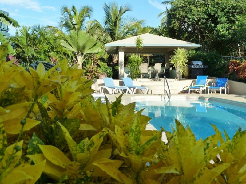Bravos Beach Cottages - All Cottages - Image 1 - Vieques - rentals