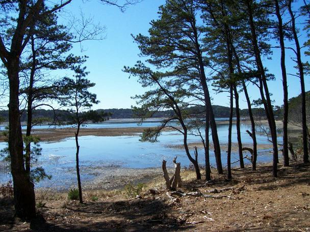 Tidal waters directly next to the home - 4 bedroom private overlooking inlet, Internet - Wellfleet - rentals