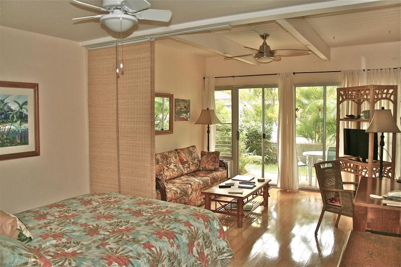 Our condo - Clean, Quiet, Comfortable.....at a GREAT Price - Kihei - rentals