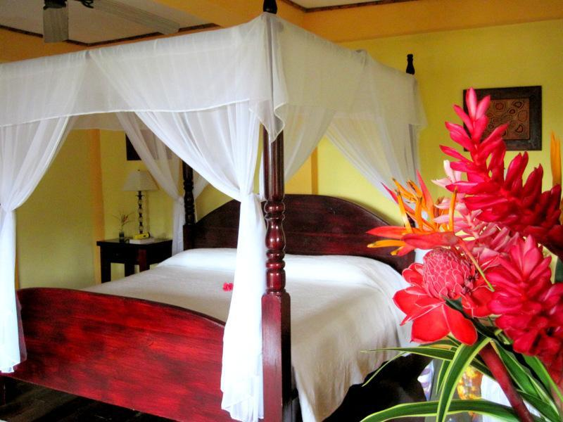 "The Bay view room - Dolphin Bay Hideaway, ""Green"" comfortable lodging - Bocas del Toro - rentals"