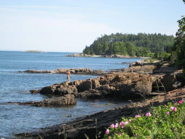 "Search the tidepools in front of your dedicated Bar Harbor Shorepath seating at ""Devilstone!"" - Bar Harbor Shorepath Estate--Carriage/Guesthouse!! - Bar Harbor - rentals"
