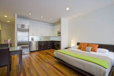 Studio - Luxury Studio in Manhattan New York - New York City - rentals