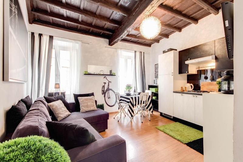 Campo dei Fiori-Lovely,quiet and bright apartment - Image 1 - Rome - rentals