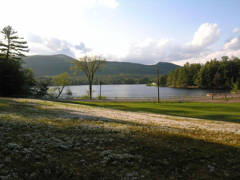 Our View - Romantic Lakeside for Two - Fireplace, Snowshoes - Wells - rentals