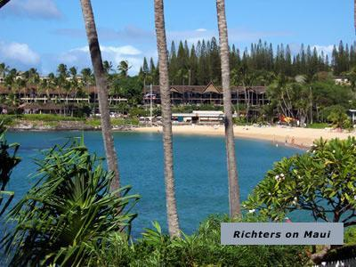 Napili Shores A206 Romantic Getaway for Two - Image 1 - Napili-Honokowai - rentals