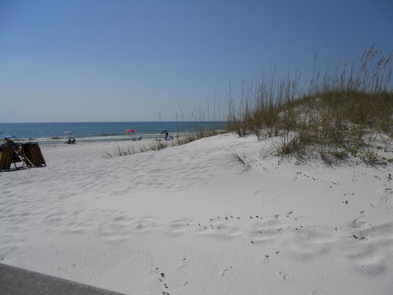 Our Beach - Ocean Views from Condo/Larger 2 bedroom/ Decorated - Seagrove Beach - rentals