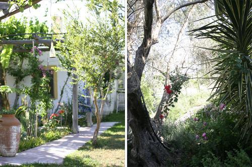 The olive yard house. w. Chloor free pool, big land - Image 1 - Koskinou - rentals