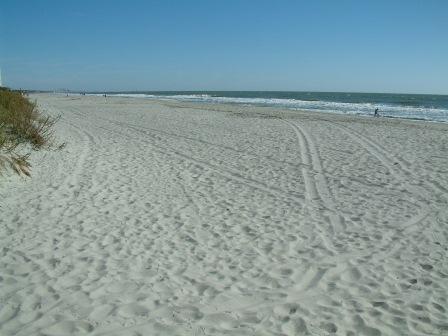 Beautiful Private Beach - 4 Bedroom Ocean View Home-Family Oceanfront Resort - Myrtle Beach - rentals