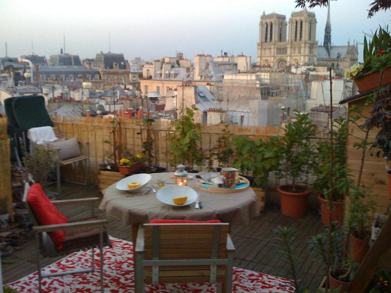 Diner on the terrace just in front of notre dame - Notre Dame Paris Flat Penthouse with 30m2 Terrace - Paris - rentals