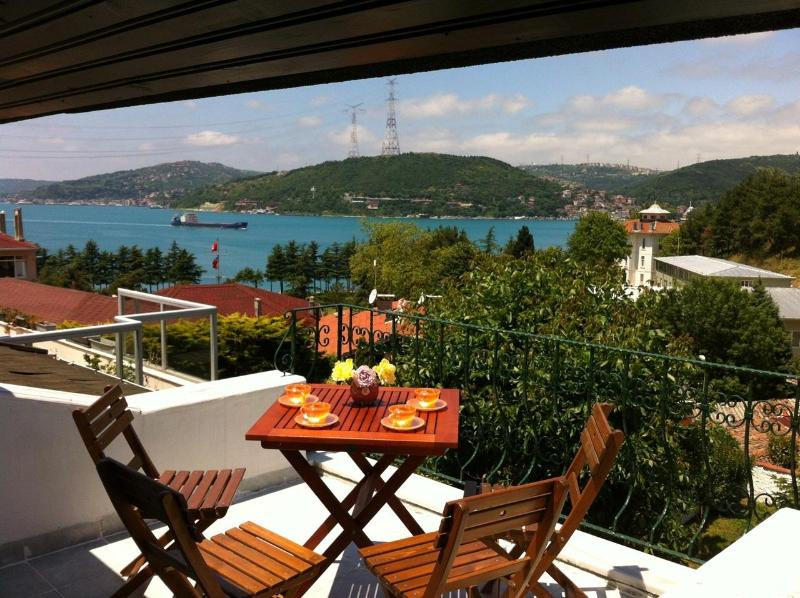Bosphorus View from the Roof Terrace - Bosphorus View Villa 4 BR / 2 BT Private Garden - Istanbul - rentals