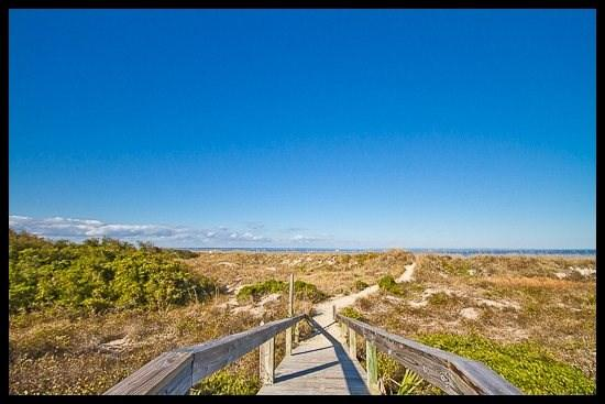 Lighthouse Point 11C - Image 1 - Tybee Island - rentals