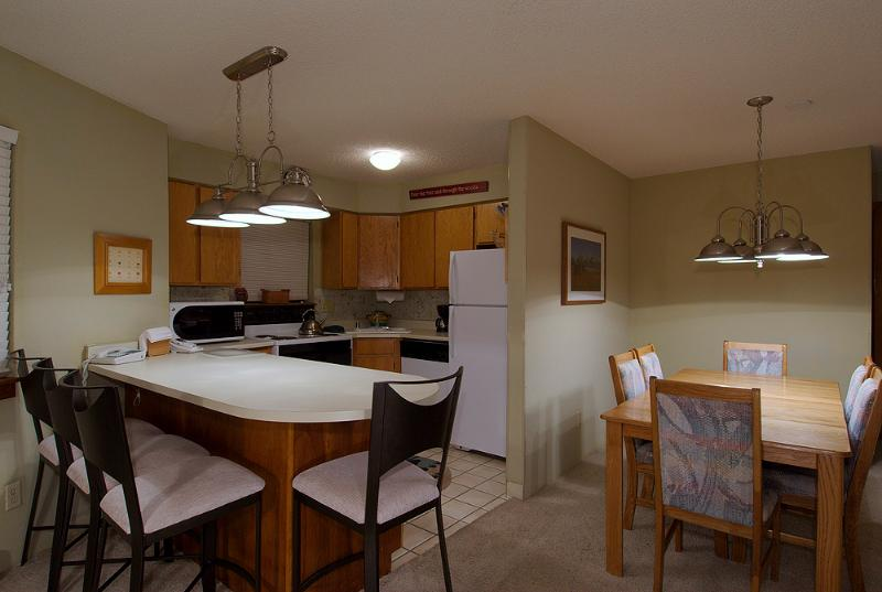 1 Bedroom, 2 Bathroom House in Breckenridge  (10B1) - Image 1 - Breckenridge - rentals
