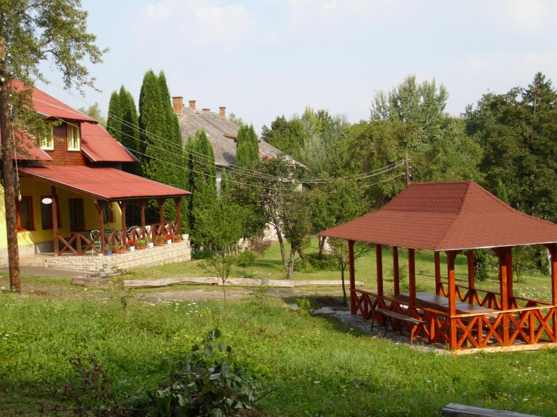 Court yard - 6 bedroom holiday villa in rural Transylvania - Maramures County - rentals