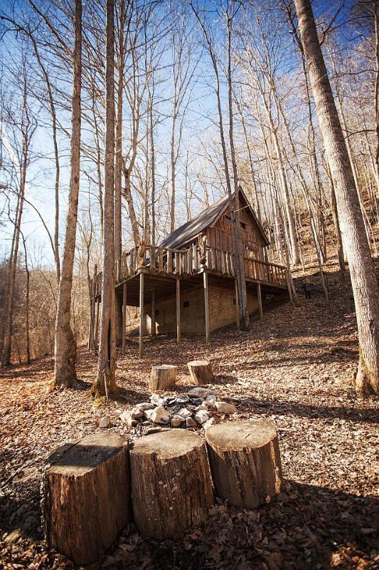The Bird Nest Cabin - Image 1 - Slade - rentals