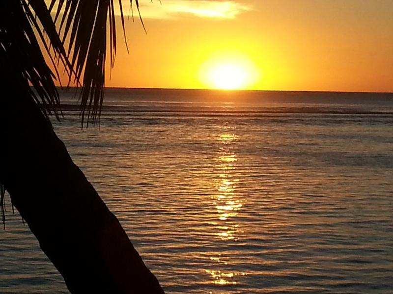 Signature Photo - Sunset Palms Rarotonga, Beach House - Avarua - rentals