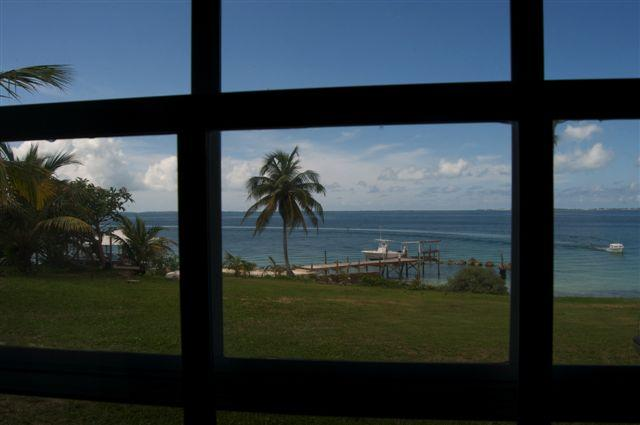 Sea of Abaco View - Seagrape by the Sea From $720/week-New Reduced Price! - Abaco - rentals