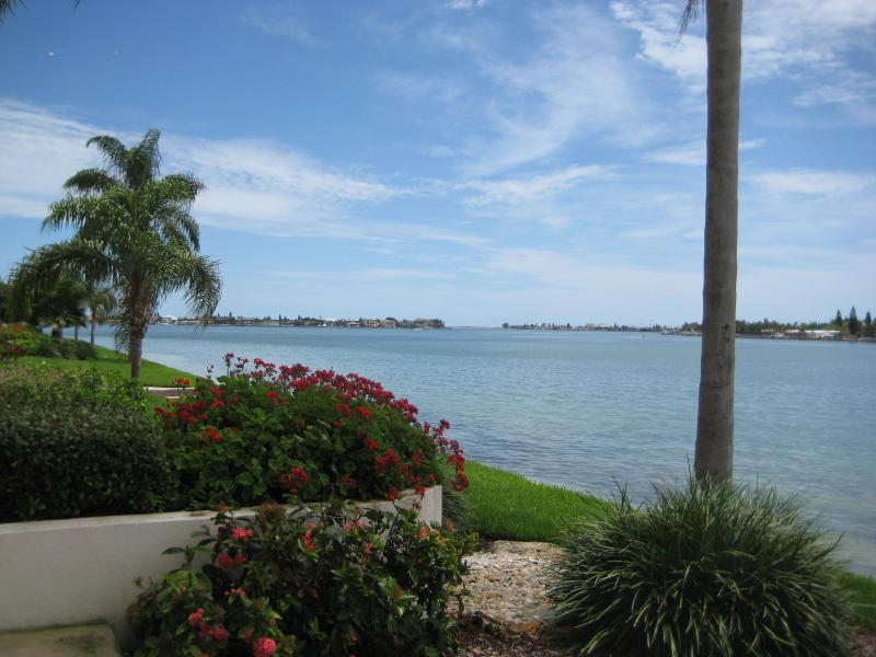 View from the patio - Club Bahia Waterfront - Country Club Usage - Saint Petersburg - rentals