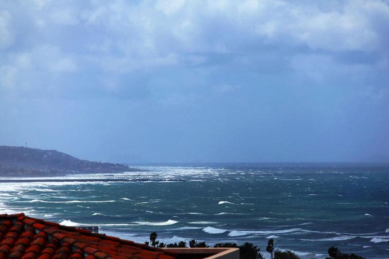 Panoramic ocean Views! - Ladybird Lane Ocean View Pool Estate - La Jolla - rentals
