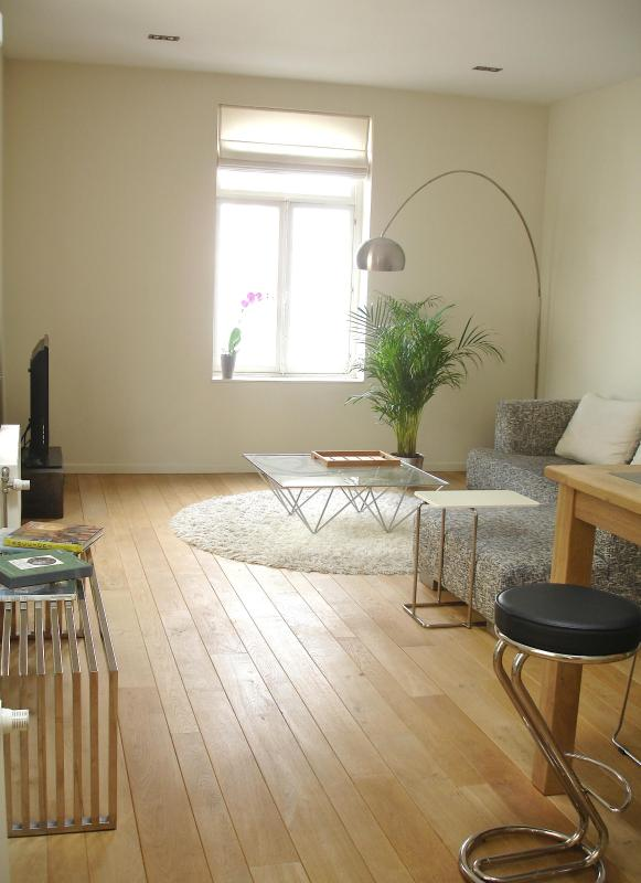 View of the living area - Beautiful designer Loft, character,near EU offices - Brussels - rentals