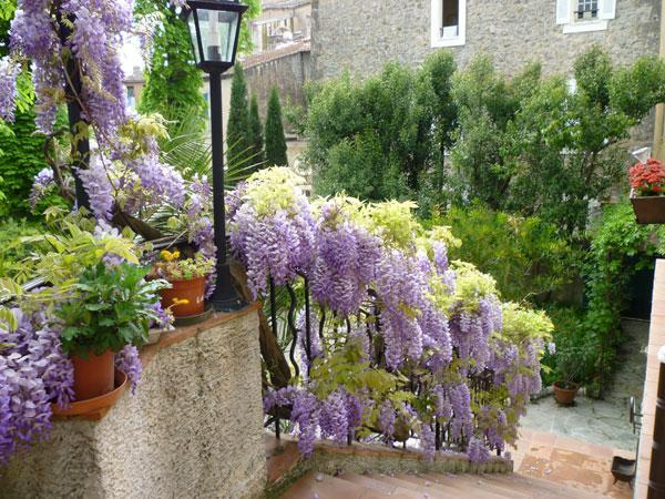 Garden Entrance - Terrific 1 Bedroom Apartment in Villa in Center of - Lorgues - rentals