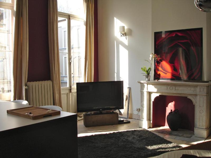 "50"" Cable TV - Beautiful flat in period house near EU offices - Brussels - rentals"
