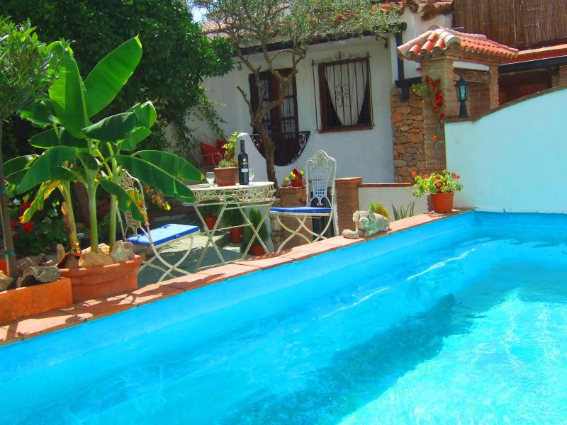 Pool and garden - VILLAGE HSE, POOL,  GARDEN, TERRACES, SUPER VIEWS. - Gaucin - rentals