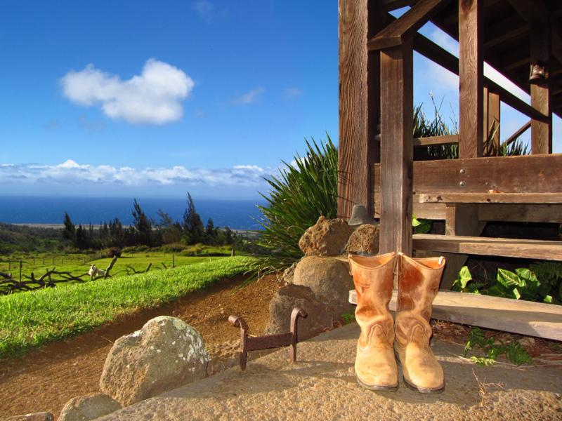 Take your Boots off, stay a while - Kohala Lodge - Great private or family retreat... - Hawi - rentals