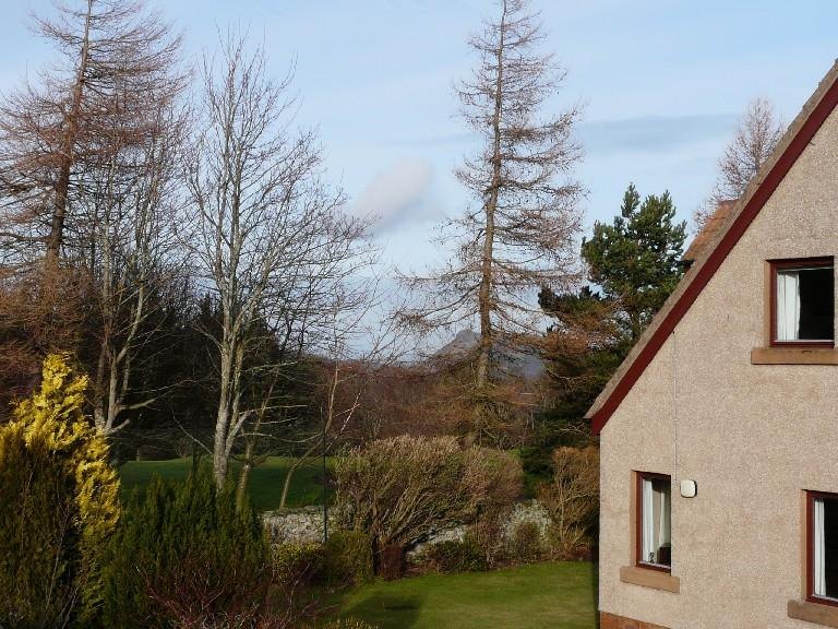 A view from the garden - Broompark: The countryside within the city - Edinburgh - rentals