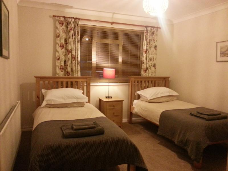 Twin room overlooking the residential car park - Farnham Flat: ideal for business visitors - Farnham - rentals