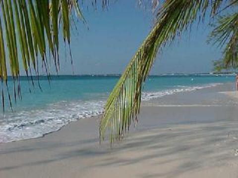 Fabulous White Sand Beaches - Siesta Beach Hideaway - Sarasota - rentals