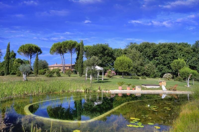Bio Pool View - Podere Cappella - Siena - rentals