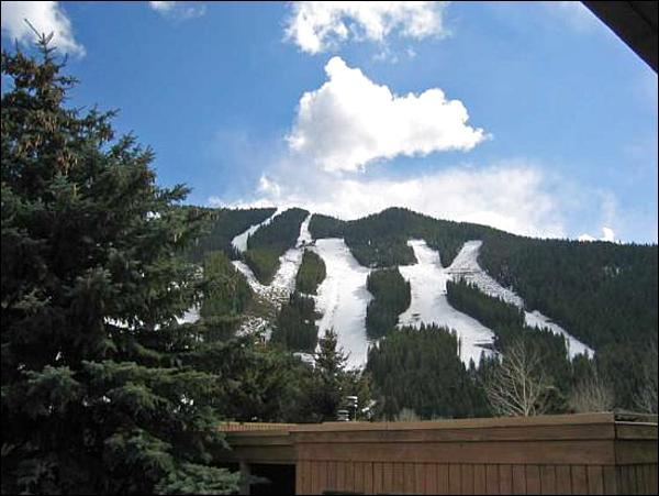 Views of Bald Mountain - Views of Bald Mountain - Recently Updated (1037) - Ketchum - rentals