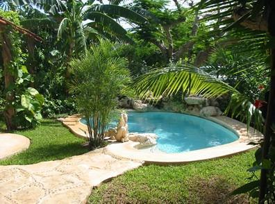 Private pool - Mayan Bungalow 60 meters from the beach - Playa del Carmen - rentals