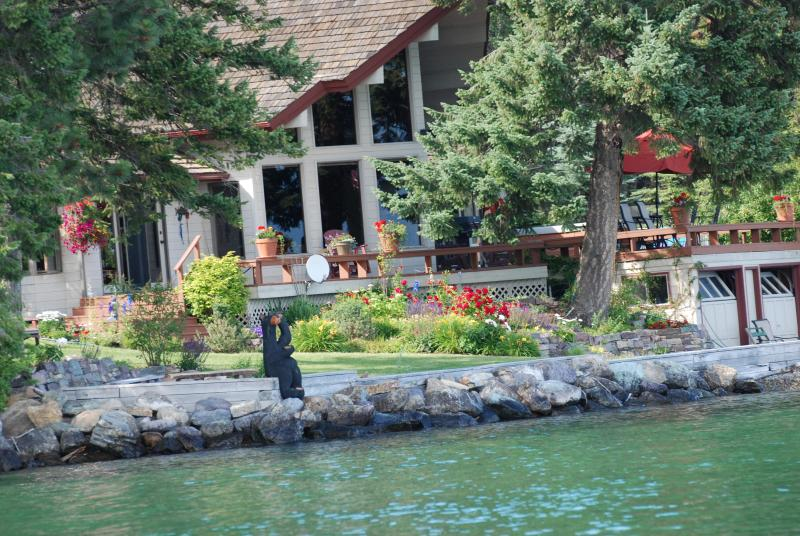 Flathead Lakefront Beautiful House on the Water! - Image 1 - Lakeside - rentals
