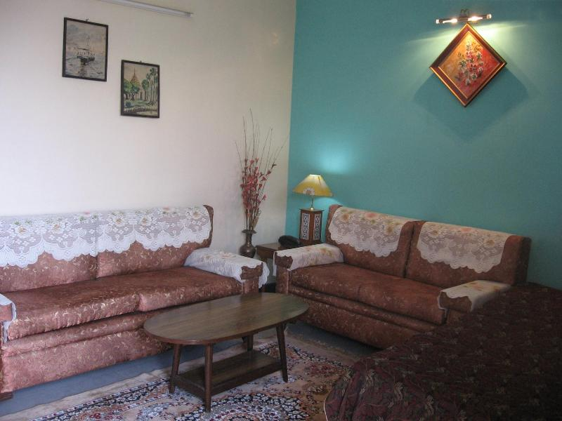 Living Room - Ananya B&B... safe & comfortable homestay in Delhi - New Delhi - rentals
