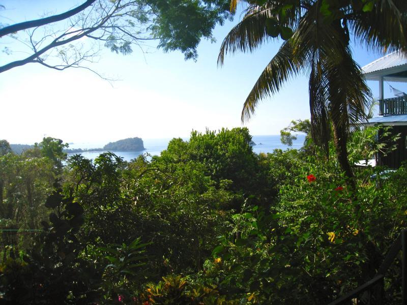 view walking up to house - Casa Neruda - Manuel Antonio National Park - rentals