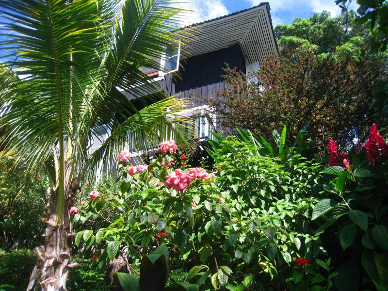 house in grounds - Casa Neruda - Manuel Antonio National Park - rentals