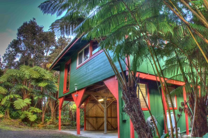 Hale Hubner rests in the heart of the lush hapu'u fern and ohia rainforest one sees in the park. - $105/nt! - Hale Hubner, Cozy Cottage, Next to Park - Volcano - rentals