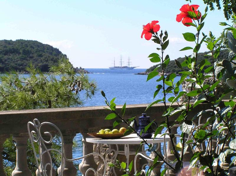 In front of the house, overlooking the sea - Family Desin House Apartments - Molunat - rentals