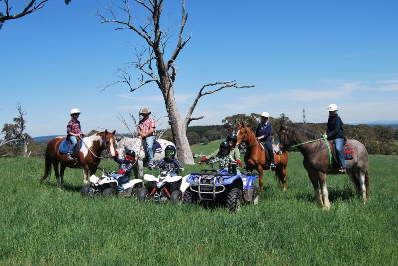 Great adventure activities for the whole family - High Country Trail Rides & Farm stay cottages. - Oberon - rentals