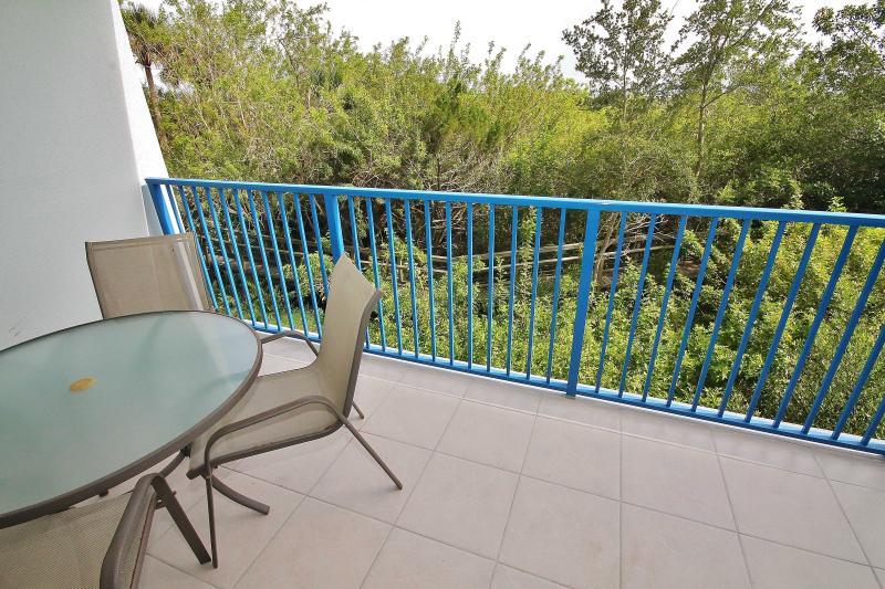 Nature Preserve View - Oceanwalk 16-203 - New Smyrna Beach - rentals