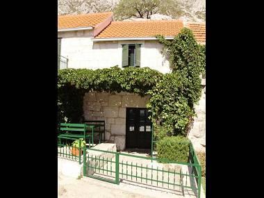SA1(2): courtyard (house and surroundings) - 5146  SA1(2) - Gata - Gata - rentals
