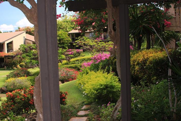 View of Garden from our Terrace - Wailea Ekahi, Privacy and Luxury - $149 - $265/nt       May/July Special $139/nt - Wailea - rentals