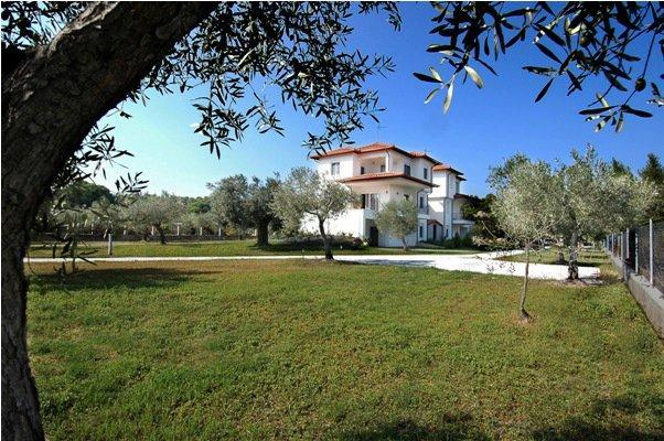 Forty Roses - Forty Roses-Gaia Apartment - Sithonia - rentals