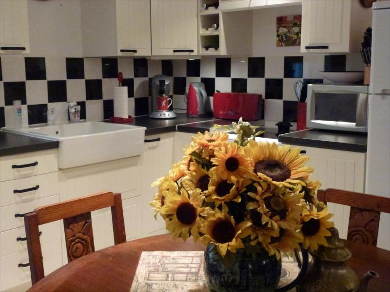 Kitchen Area - Bijou de Soleil - A Jewel of the Sun   (Languedoc) - Caux - rentals