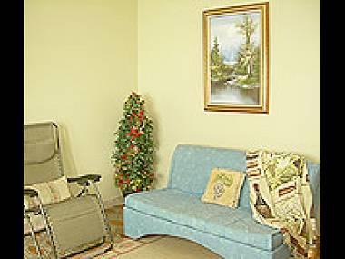 A1(3+2): living room - 5167 A1(3+2) - Zaton (Zadar) - Zaton (Zadar) - rentals