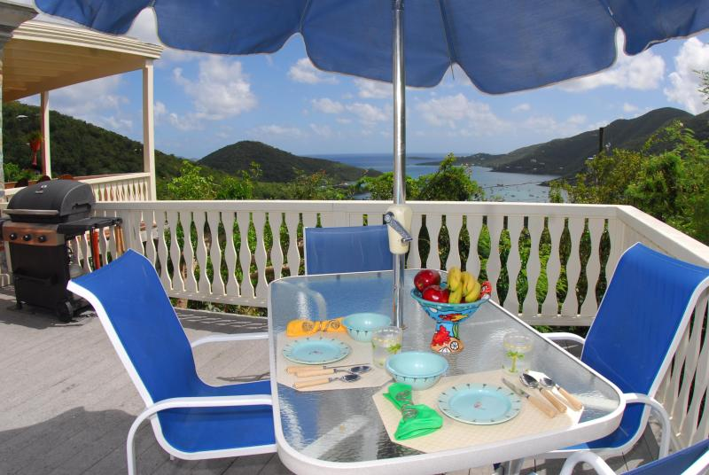 La Bella Villa: where you can choose sun or shade, always with great views! - La Bella Villa: Views! Breezes! Location! Perfect! - Coral Bay - rentals
