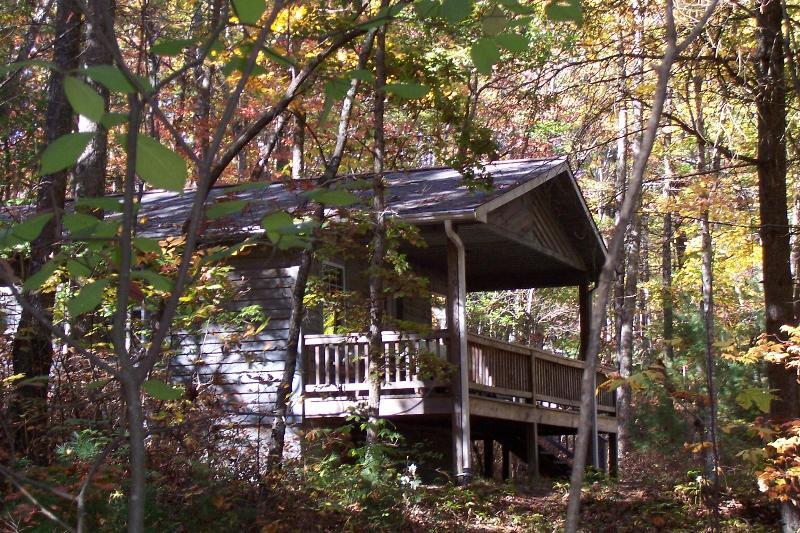2 bedroom cabin in the woods - Cabin in Willoughby Woods   2  bedroom cabins - Brevard - rentals