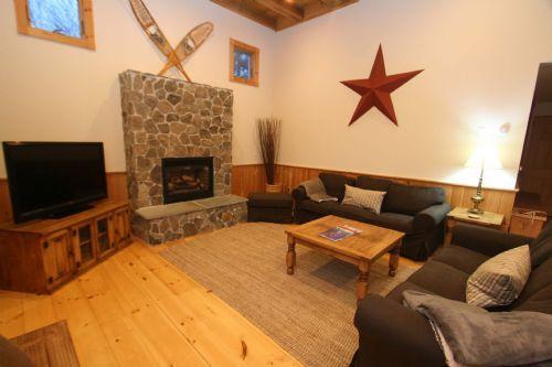 Stowe Barn - Image 1 - Stowe - rentals
